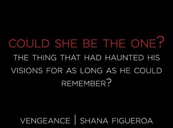 vengence-teaser-2